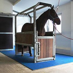 Horse clinic Verl, Germany